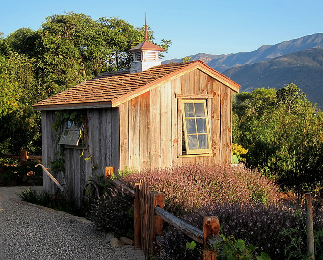Rustic Style A Storybook Potting Shed Rises From A Dirt Lot