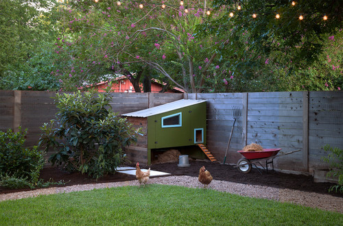 Perfect for a fenced in yard, this geometric chicken coop features a brightly colored pain scheme and a raised design for keeping your chickens safe and comfortable.