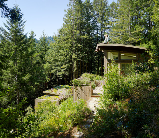 Mill Valley Cabins Contemporary Shed San Francisco