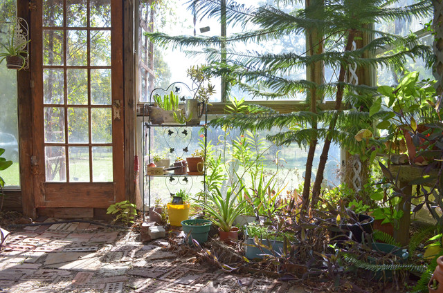 Recycled Greenhouse in Piny Woods of Texas eclectic-shed