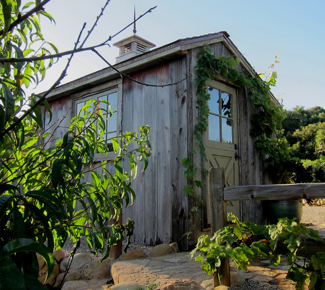 Salt Box Shed With Dutch Door And Cupola Farmhouse