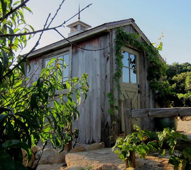 Salt Box Shed With Dutch Door And Cupola Farmhouse
