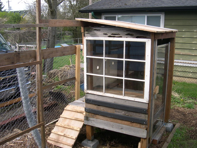 Urban Chicken Coop Eclectic Shed Portland By