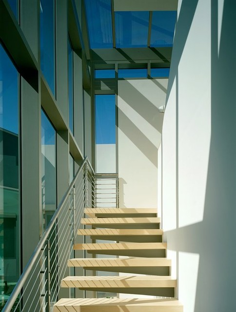 Contemporary Beverly Hills contemporary-staircase