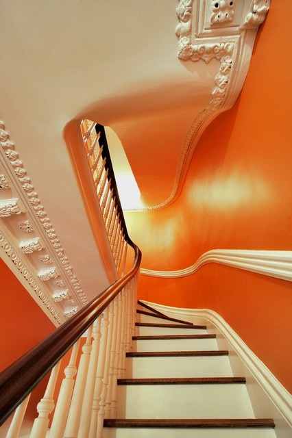 Fort Greene Townhouse Full Renovation traditional-staircase