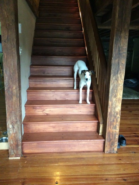 Heart Pine Stairs Finished with Osmo Wood Wax in Mahogany - Traditional - Staircase ...