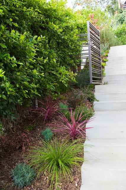 Larissa Drive Drought Tolerant Garden Contemporary