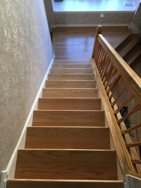 Oak Quot Natural Quot Treads Contemporary Staircase By Dan