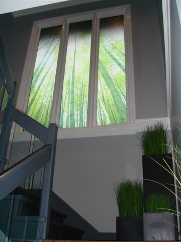 Printed window film, Bamboo forest, Smartfilms, Vancouver ...