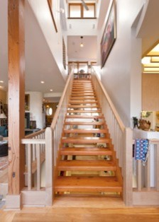 Private Residence Milwaukee eclectic-staircase
