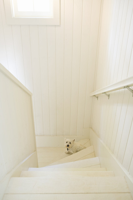 Rustic Canyon New Home transitional-staircase