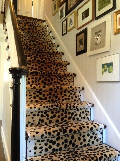 Staircase Wall Decorating Ideas Contemporary Staircase