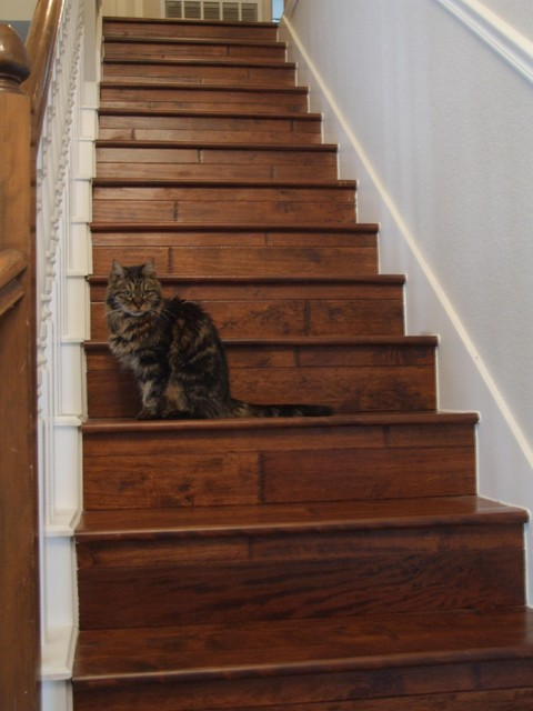 Wooden Stairs - Traditional - Staircase - Dallas - by Town ...
