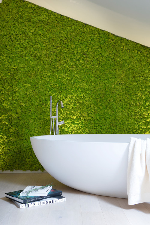 vertical garden in bathroom