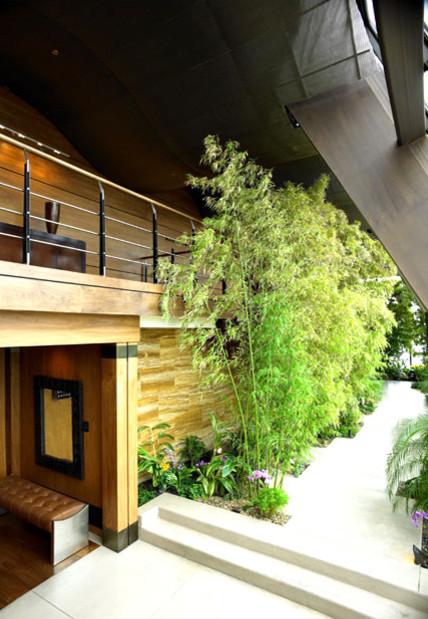 entry garden contemporary-entry