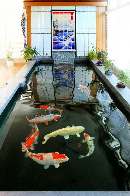 Indoor koi pond asian sunroom new york by barlo for Indoor koi fish pond