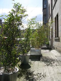 Comely bank edinburgh contemporary terrace amp balcony glasgow