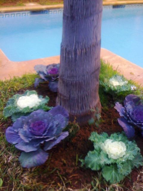 Am nagement paysager jardin espace vert privatif for Amenagement jardin 35