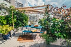 Avant/Après : De vaste terrasse avec vis-à-vis à forêt urbaine