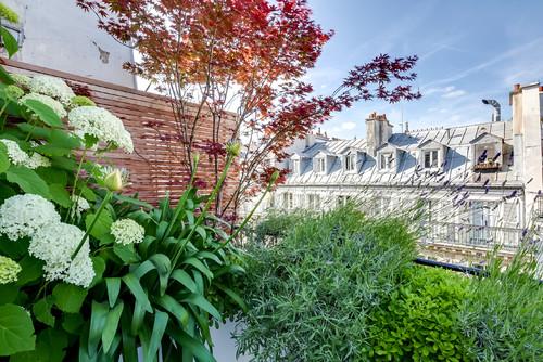 Setzen Sie auf eine beständige, frostharte, teilweise wintergrüne Bepflanzung der Blumentöpfe: Lavendel, Buchsbaum, Gräser