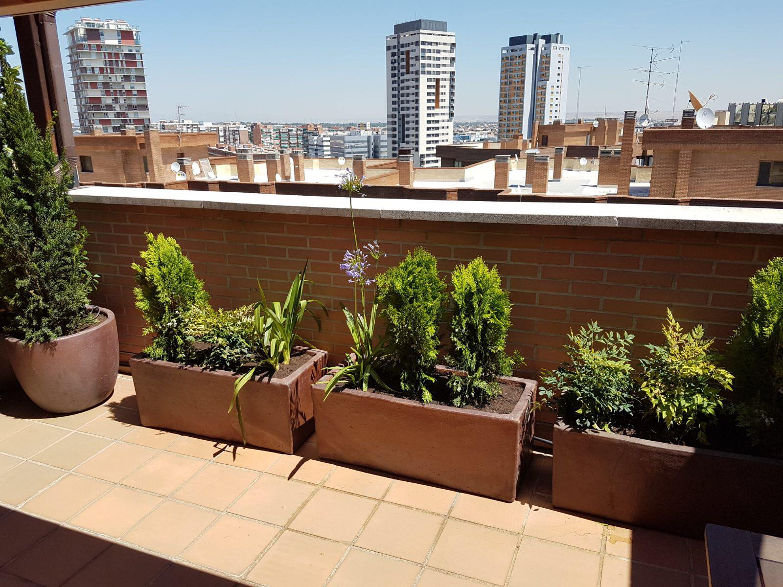 Terraza Centro de Madrid