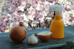4 Antiparassitari per le Piante, Naturali e Fai da Te
