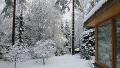 Как правильно: Приспособить участок для проживания зимой