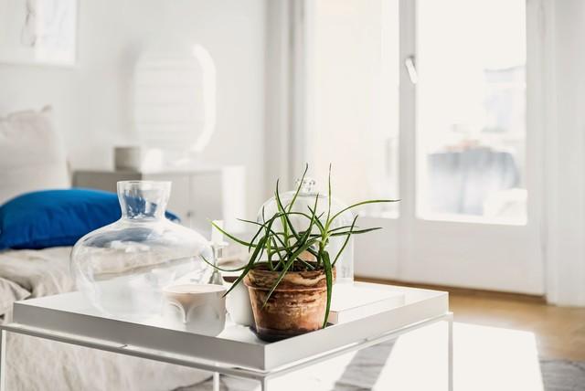 Inspiration för minimalistiska vardagsrum