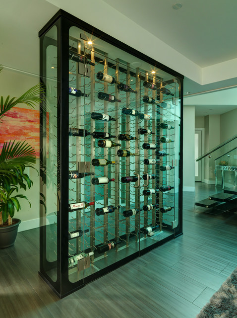 All Glass Wine Cellar Modern