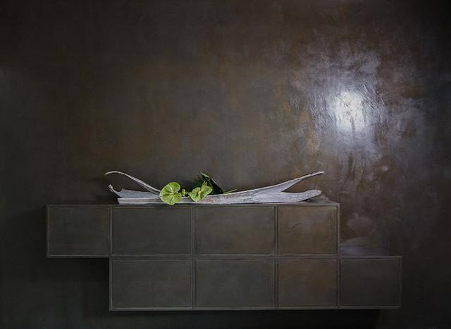 Chamäleon, Identische Oberfläche Auf Möbel Und Wand Modern Wohnbereich